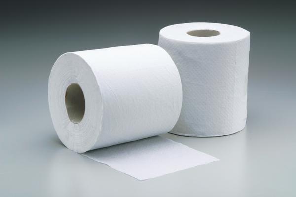 Princess Pignatelli Fashion Toilet Tissue Vs Toilet Paper